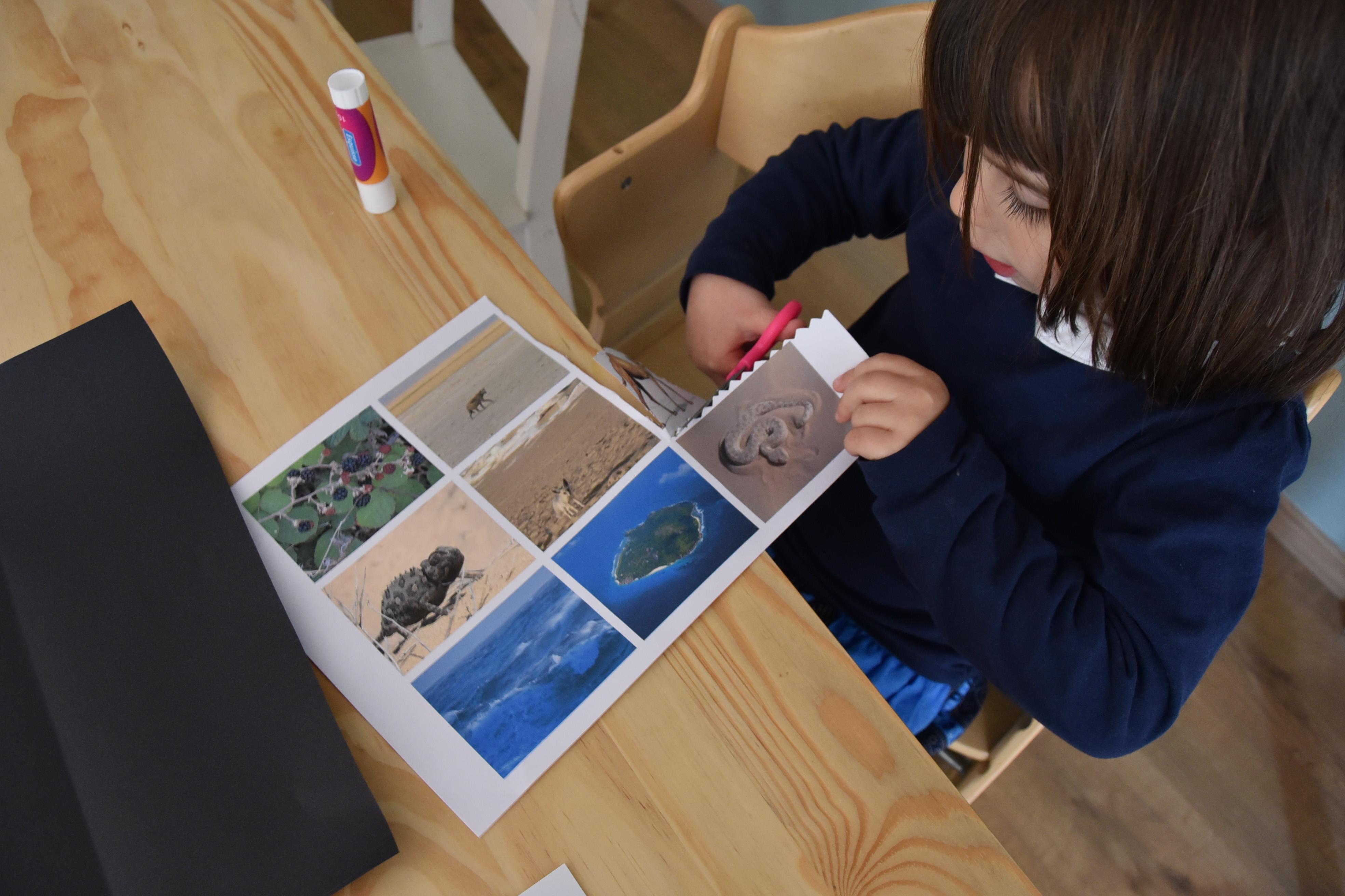 Poster écosystème